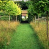 Thumbnail image for Review of Veddw House Garden by Robin White