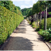 Thumbnail image for Scampston: The Walled Garden reviewed by Charles Hawes