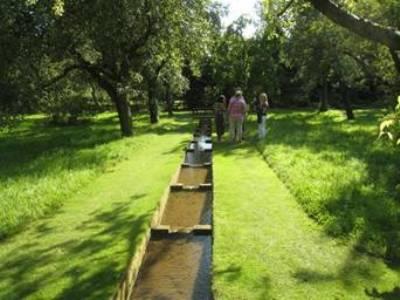 Coton Manor Garden by Anne Wareham - Image 12