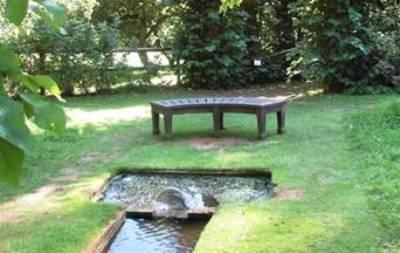Coton Manor Garden by Anne Wareham - Image 13