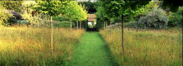 Veddw House Garden - Robin White