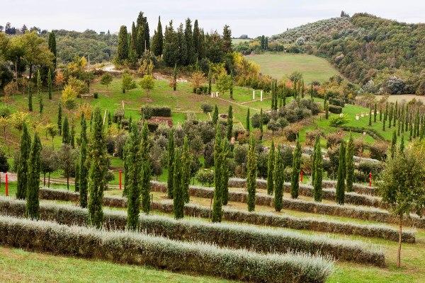 Il_Bosco_Della_Ragnaia_3-©-Charles-Hawes by Rory Stuart thinkingardens, good garden writing