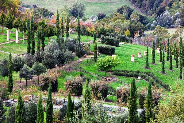 Il_Bosco_Della_Ragnaia_4-©-Charles-Hawes thinkingardens good garden writing