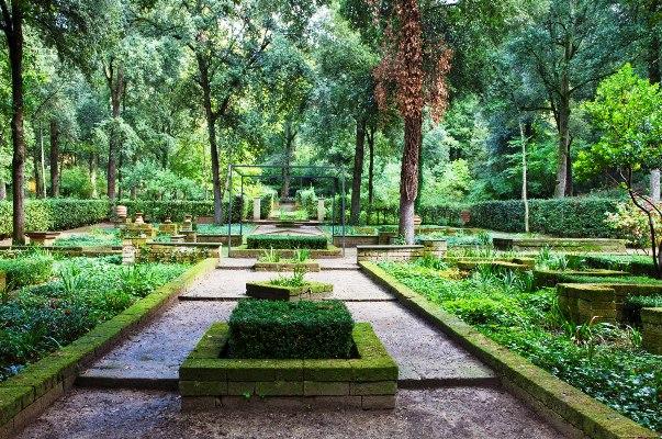 Il_Bosco_Della_Ragnaia_5-©-Charles-Hawes by Rory Stuart  thinkingardens good garden writing