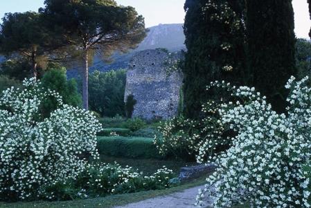 Garden at Ninfa copyright Charles Hawes