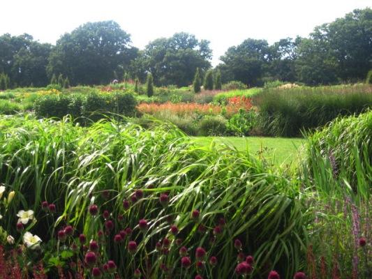 Sussex Prairies Garden copyright Kate Buxton