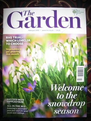 The Garden 1 copyright Anne Wareham