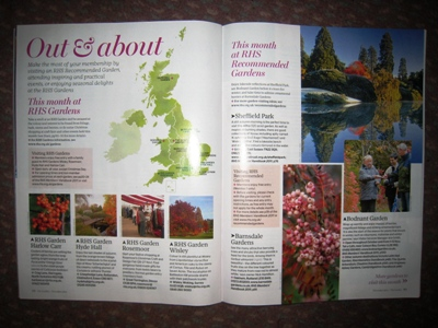 The Garden Out and About page Copyright Anne Wareham