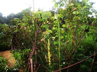 Painswick Rococo Garden Art in the Garden 20