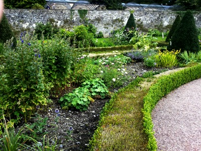 Box Blight and lots of soil © Anne Wareham Thinkingardens, think gardens, think in gardens, Aberglasney, Aberglasney Garden, South Wales Garden, Welsh garden, Anne Wareham, Veddw, garden review