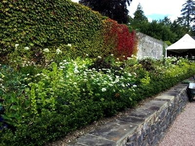 Good planting by cafe © Anne Wareham Thinkingardens, think gardens, think in gardens, Aberglasney, Aberglasney Garden, South Wales Garden, Welsh garden, Anne Wareham, Veddw, garden review