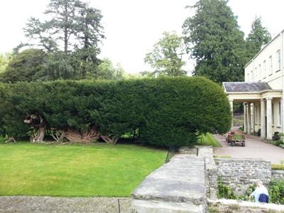 Yew Tunnel © Anne Wareham Thinkingardens, think gardens, think in gardens, Aberglasney, Aberglasney Garden, South Wales Garden, Welsh garden, Anne Wareham, Veddw, garden review