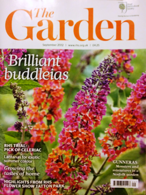 Photographer Renovates Garden Magazine