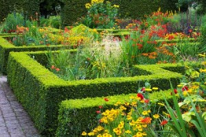 Le Jardin Plume, Normandy France copyright Charles Hawes for thinkingardens
