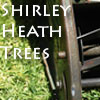 Shirley Heath Trees Fencing Birmingham