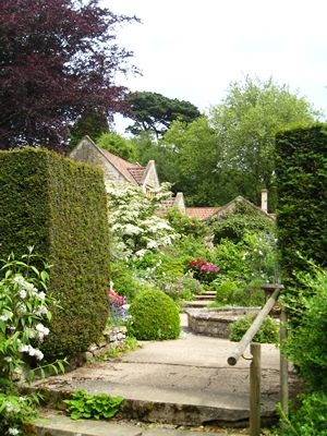 Kiftsgate. Copyright Anne Wareham for thinkingardens