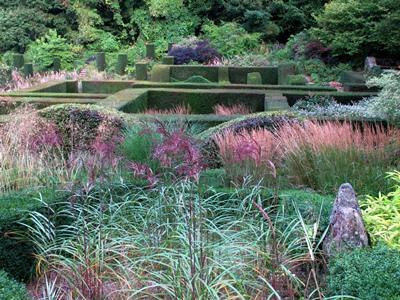 View across grasses, Veddw, copyright Anne Wareham for thinkingardens