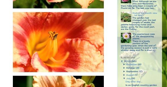 Daylily copyright Jane Scunthorpe for thinkingardens
