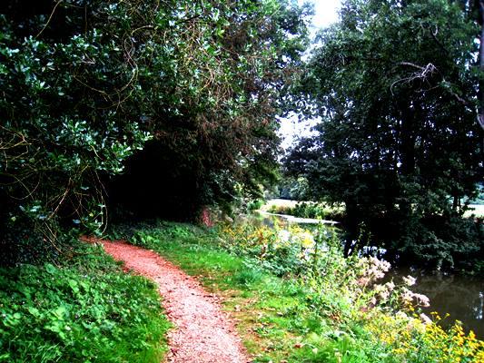 Rousham copyright Anne Wareham, thinkingardens