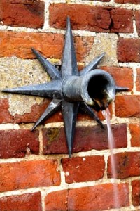 Water pipe (2) George Carter Garden copyright Ann Hawkins.