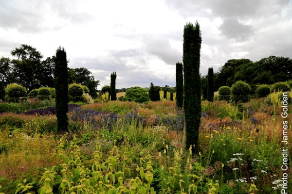 Plantings at Broughton Grange, designed by Tom-Stuart Smith. Copyright James Golden