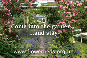 Bed and Breakfast - Flowerbeds - NGS