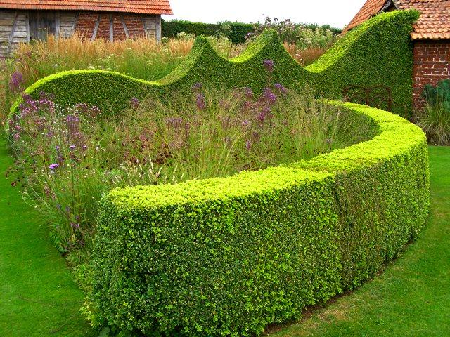 Jardin Plume resized fascinating hedgescape P7210317 Copyright Adam Hodge (2)