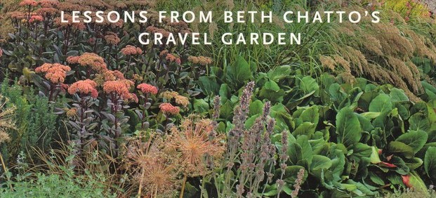 Old Fashioned? Review by Mark Laurence of Drought Resistant Planting by Beth Chatto