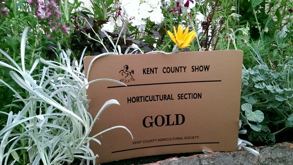 Our award at the Kent County Show 2014