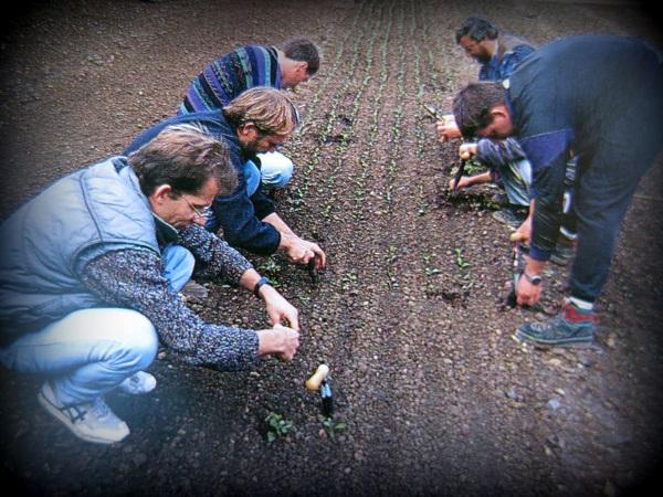 monet-gardeners-at-work-img_0101
